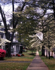 Affordable small town for retirement - Opelika AL
