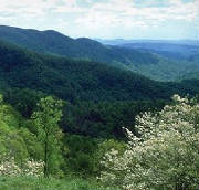 Black Mountain NC is nestled in the Bllue Ridge Mountains